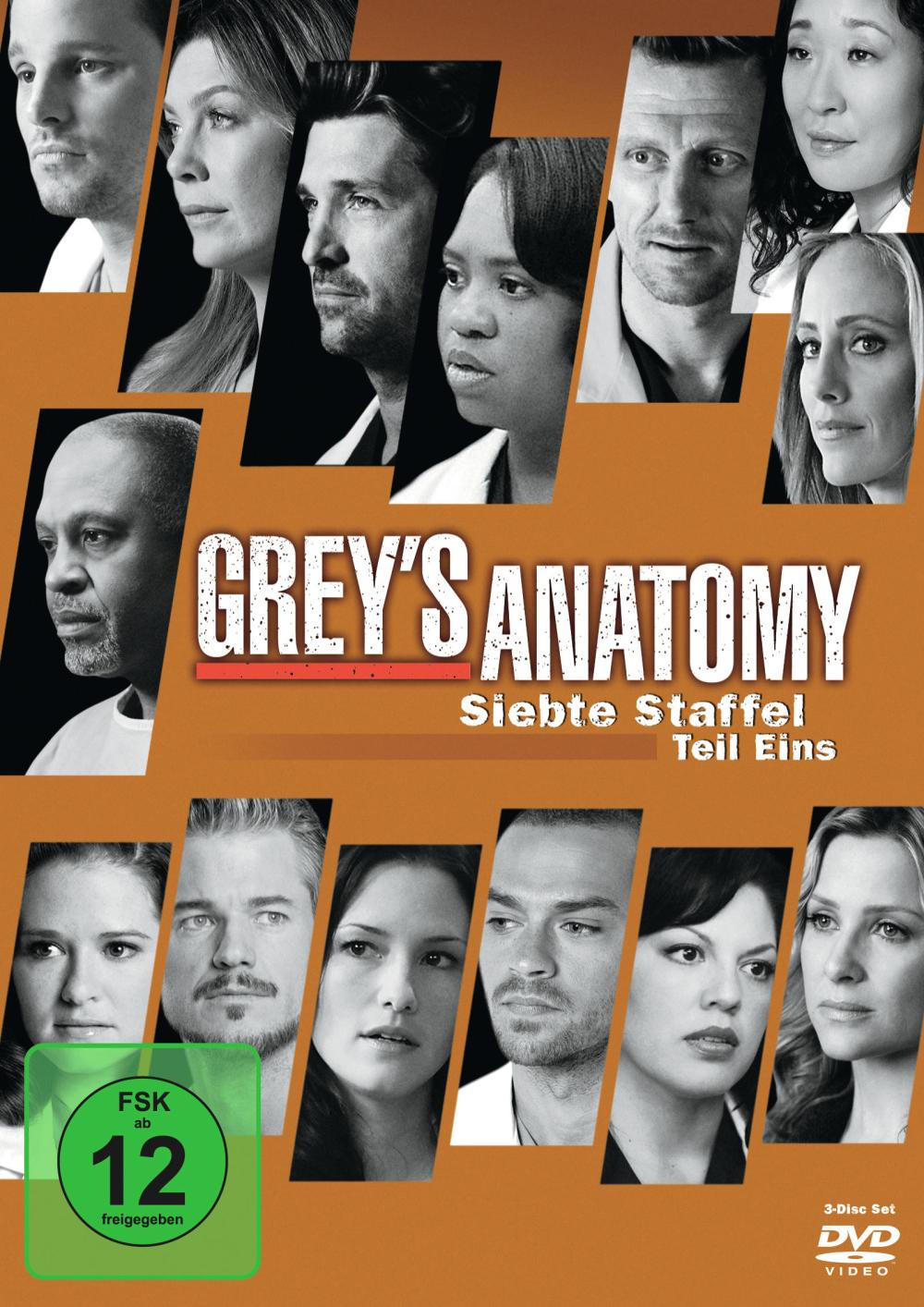 grace anatomy staffel 12