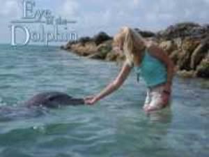Delfinflüsterin